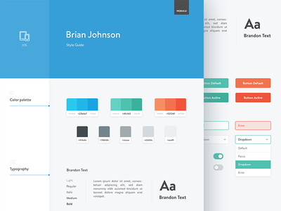 Style Guide colors ui elements icons style guide