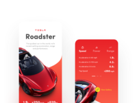 Teslaroadster   attachment a