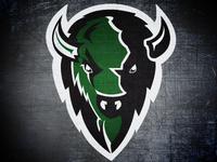 Oklahoma Baptist University Bison logo