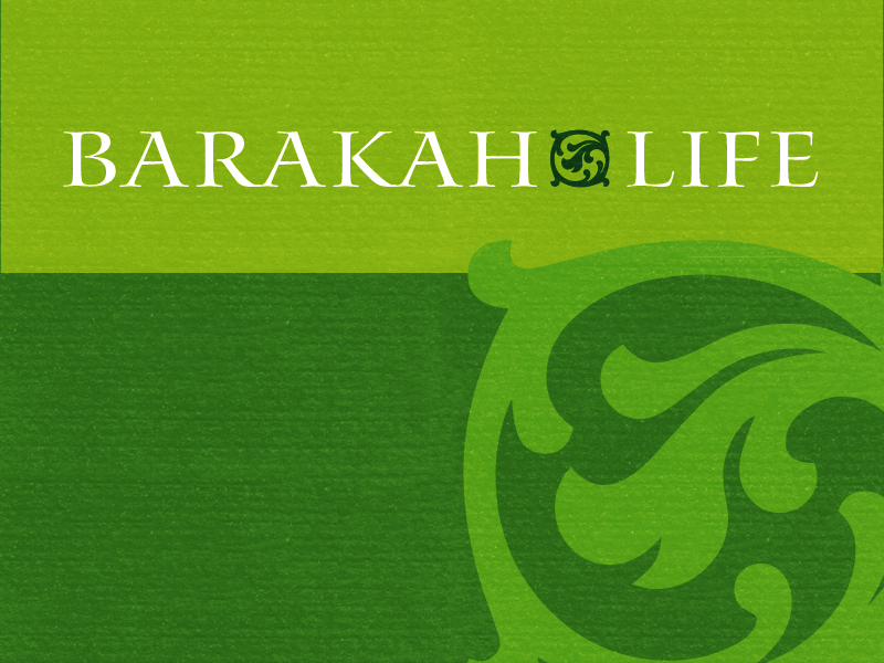 Barakah Life Business Card (1/2) rumi barakah business cards stationery print print design logo mark logo type logo branding brand graphic design