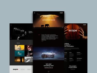 Storytribe website