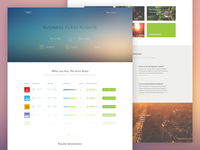 Flight tickets landing page