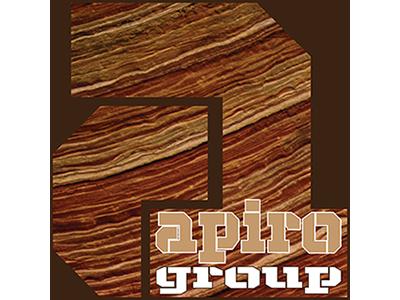 Apiro retro illustrator logos