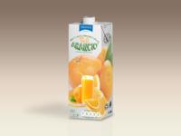 Orange Juice Bottle Tetra Brik Mockup