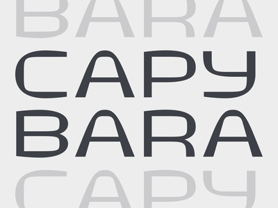 I call it Capybara capybara typedesign display type allcaps type design letters font design custom font typeface custom lettering custom type typography type lettering design abstract logo branding geometric vector