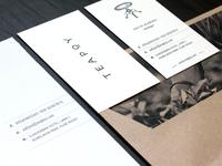 """Teapoy"" Brand Design"