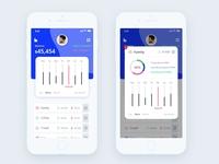 budget ios App design