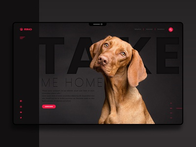 User interface design for a dog shelter design cover prototypes landing page user experience user interface design userinterface dog user interface