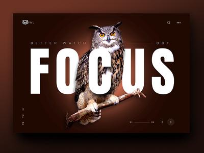 Focus dark beige wild animal inspiration ux ui focus brown owl