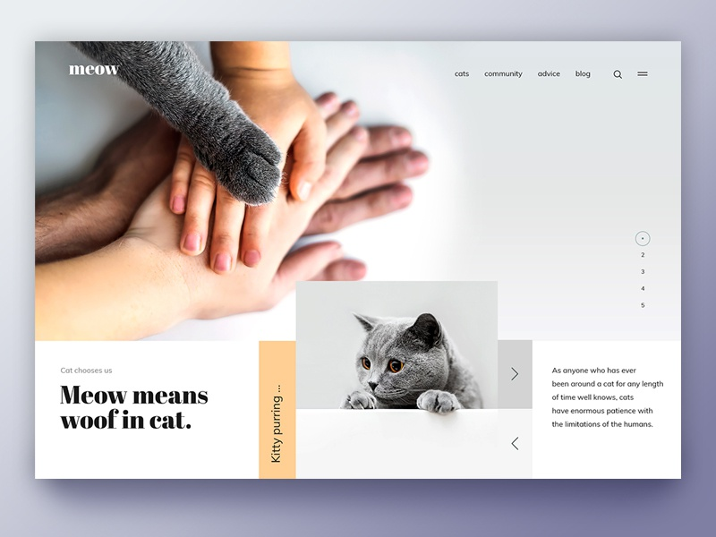 """Meow"""" means """"Woof"""" in cat. clean creative landing page webdesign design purple inspiration uiux ux ui family love animal dog cat"""