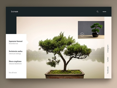 Bonsai beautiful design webdesign website landing page uiux ux ui plant green nature slider tree bonsai