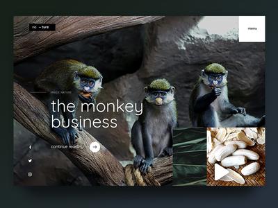 Monkey Business creative website web page design uiux ux ui jungle forest love green nature animal monkey