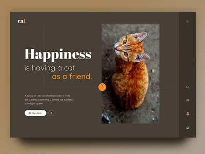 Cat beige creative website web page ux ui happiness friend love animal pet orange cat