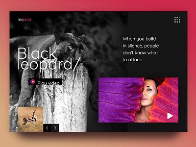 Panther graphic website web page design uiux ux ui black danger attack jungle panther
