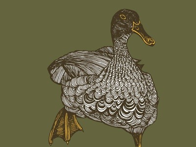 Busy Duck patterns illustration waterfowl duck mixed media pen and ink