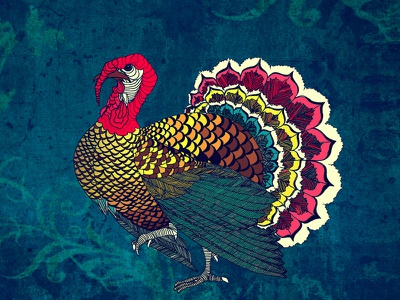 Fancy Turkey