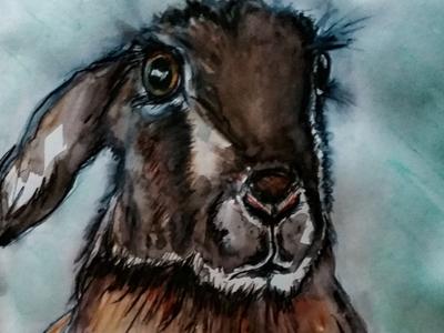 Pensive Hare