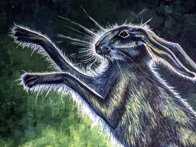 Dance of the Boxing Hare