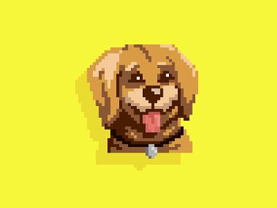 Pixel pup pup vector collar pixel art pixelart dog illustration