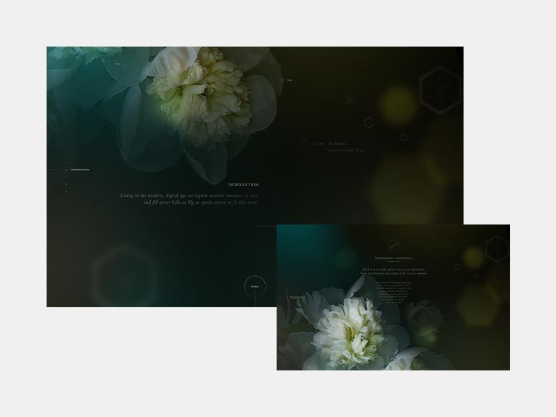 Blooming Data