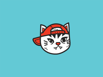 cool cat with a cap