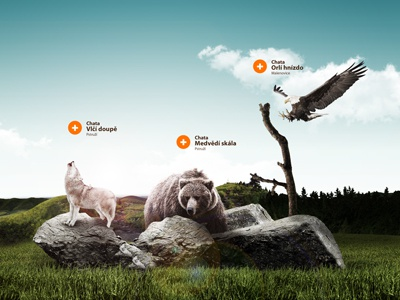 Beskydy's chalets website concept photomanipulation postproduction nature photo manipulation effects bear wolf eagle