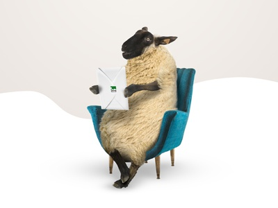 Sheeps concept for mountain hotel resort photo montage postproduction