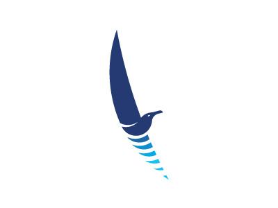 Adria Experience, sailing + seagull adriatic experience sail sailing boat blue sea flying flight seagull