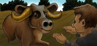 Bull And Guy