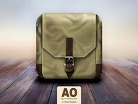 Ally Capellino Bag Icon