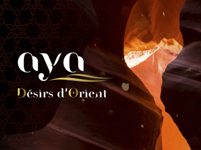 Aya 10 years cover travel tourism logo brochure