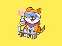 Shiba Inu - Chemistry