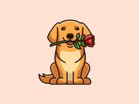 Golden Retriever & Rose