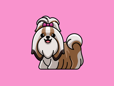 Long-haired Shih Tzu