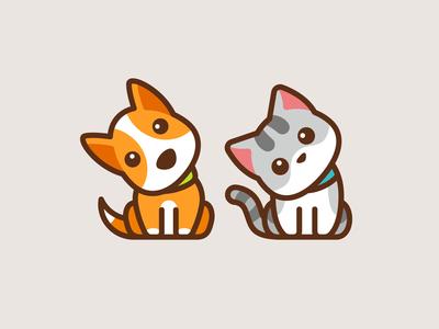 Confused Dog & Cat