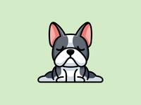 Yoga Bulldog