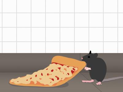 Pizza Rat mta subway nyc rat pizza