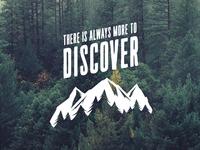 Animalia - Discover Design
