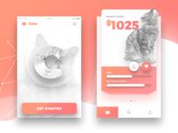 Cats App