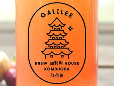 Galilee Kombucha kombucha bottle label branding logo