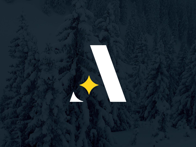 a star branding design identity typography mark branding concept logo branding