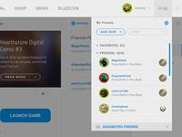Battlenet App - Light Concept - Friends List