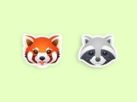 Red Panda & Racoon