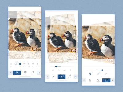 Photo Edit Page design flat ui app