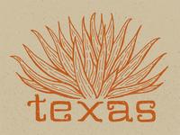 Yucca Texas