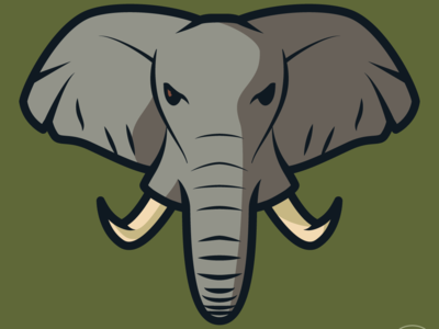 Elephant illustration illustrator elephant animal design logo