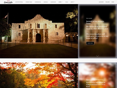 Capture la Vie photography website webdesign design shopify ecommerce