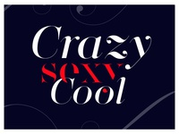 Crazy Sexy Cool Lingerie Typeface by Moshik Nadav Typography