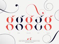Lingerie Typeface Lowercase g by Moshik Nadav Typography