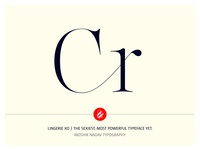 Cr Ligature Made With Lingerie XO By Moshik Nadav Typography
